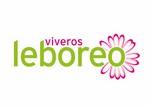 leboreo (Copiar)